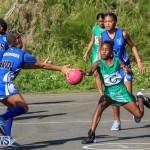 Netball Bermuda, January 17 2015-25