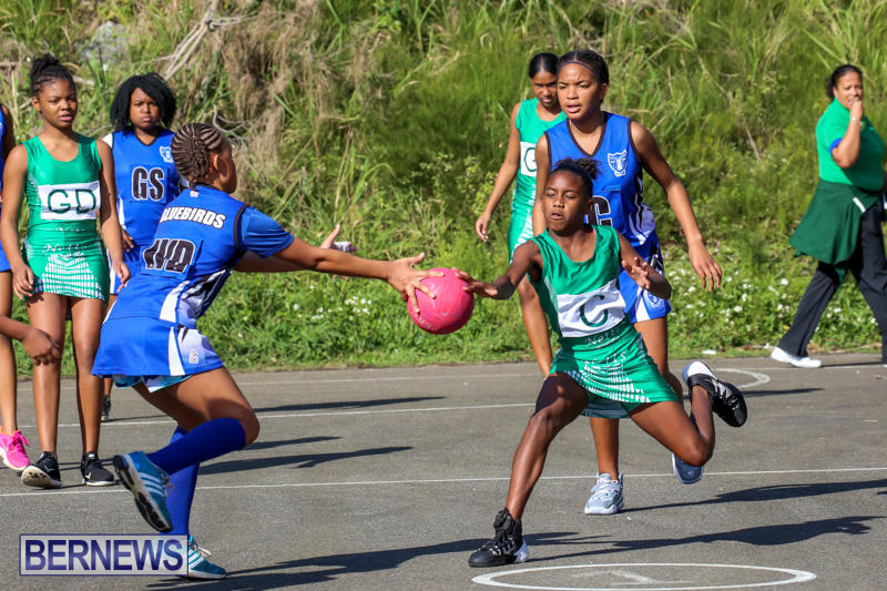Netball-Bermuda-January-17-2015-25