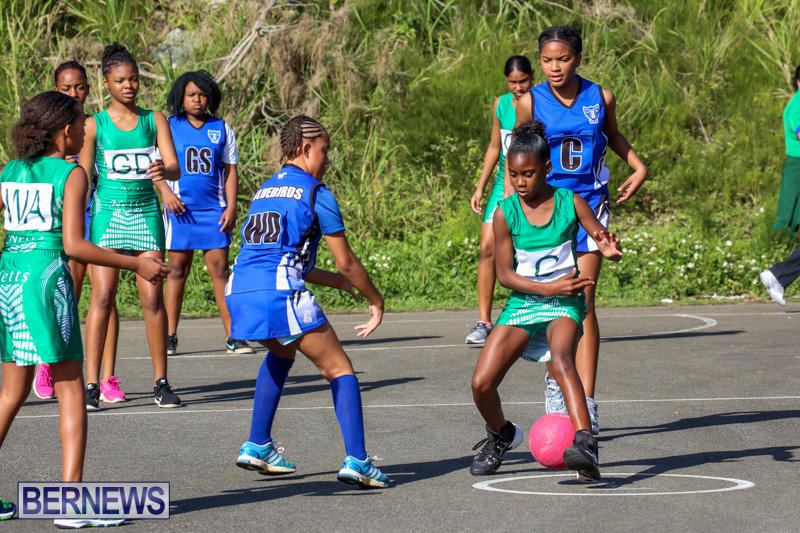 Netball-Bermuda-January-17-2015-26