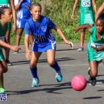 Netball Bermuda, January 17 2015-28