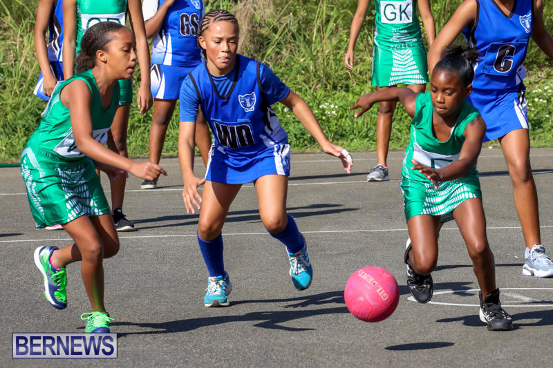 Netball-Bermuda-January-17-2015-28