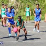 Netball Bermuda, January 17 2015-29