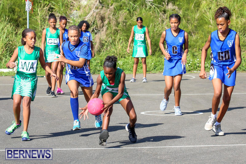 Netball-Bermuda-January-17-2015-29