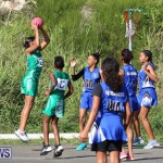 Netball Bermuda, January 17 2015-3