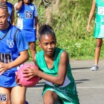 Netball Bermuda, January 17 2015-30