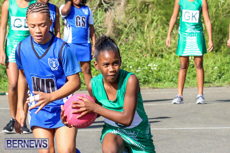 Netball-Bermuda-January-17-2015-30
