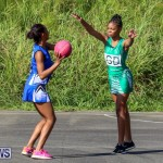 Netball Bermuda, January 17 2015-32