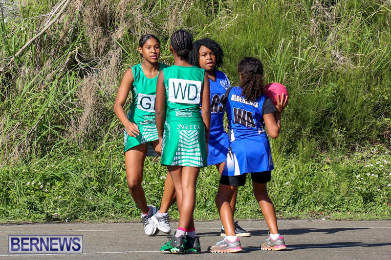 Netball-Bermuda-January-17-2015-33