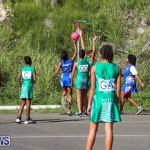 Netball Bermuda, January 17 2015-34