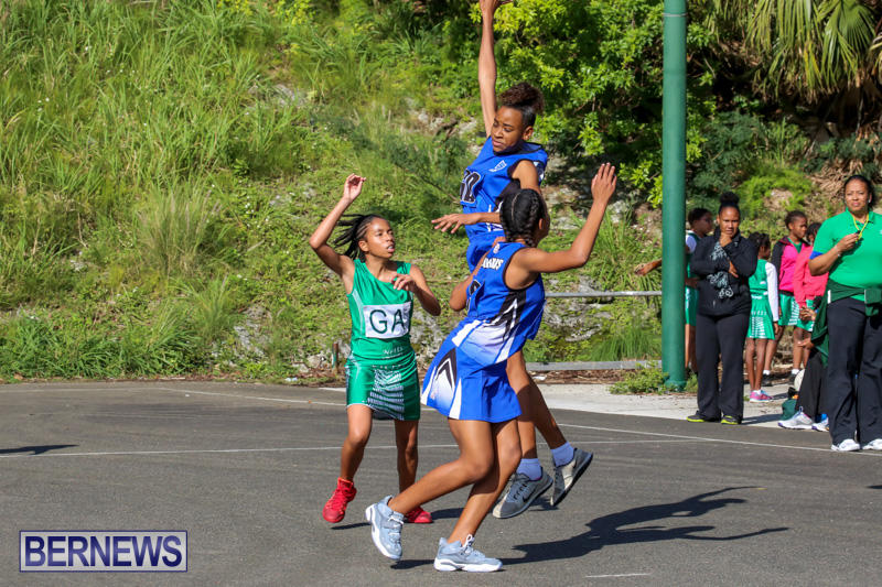 Netball-Bermuda-January-17-2015-35