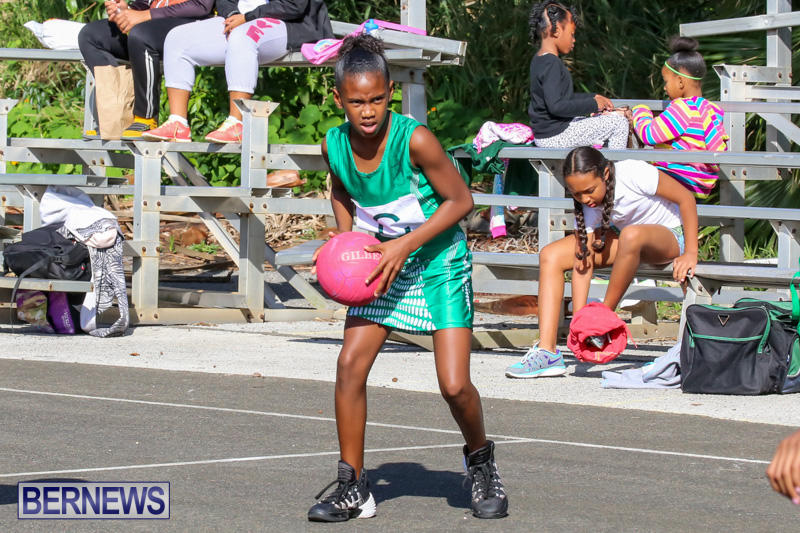 Netball-Bermuda-January-17-2015-36
