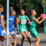 Netball Bermuda, January 17 2015-37