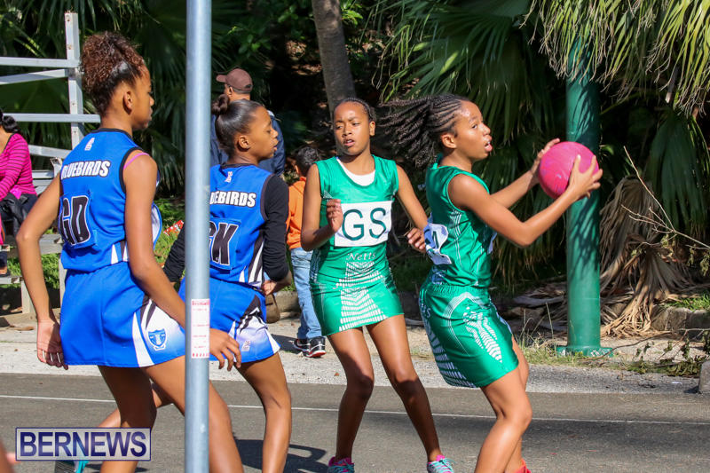 Netball-Bermuda-January-17-2015-37