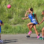 Netball Bermuda, January 17 2015-38