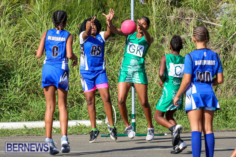 Netball-Bermuda-January-17-2015-39
