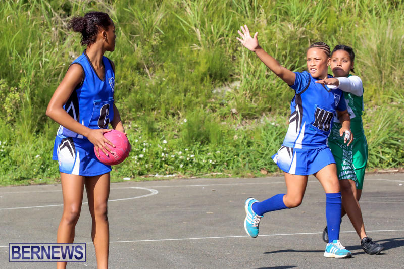 Netball-Bermuda-January-17-2015-4