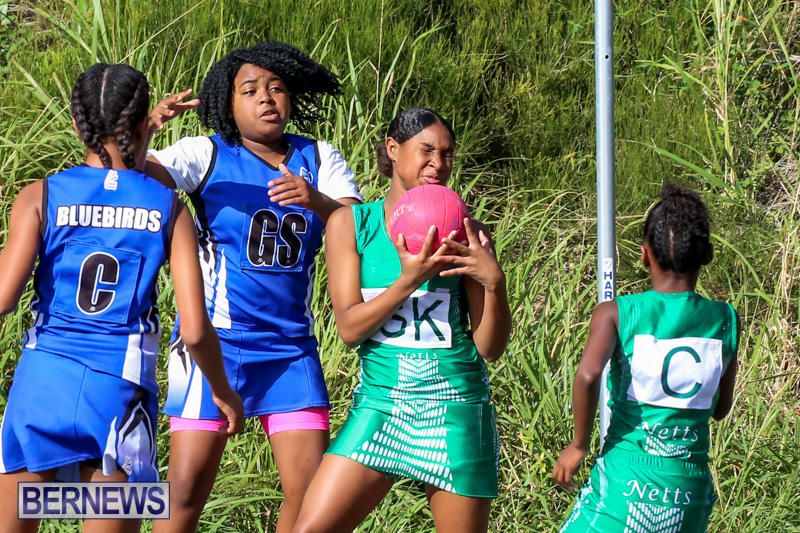 Netball-Bermuda-January-17-2015-40
