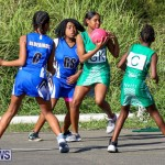 Netball Bermuda, January 17 2015-41