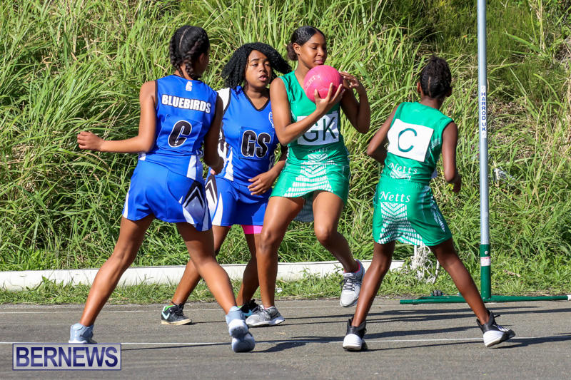 Netball-Bermuda-January-17-2015-41