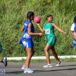 Netball Bermuda, January 17 2015-42