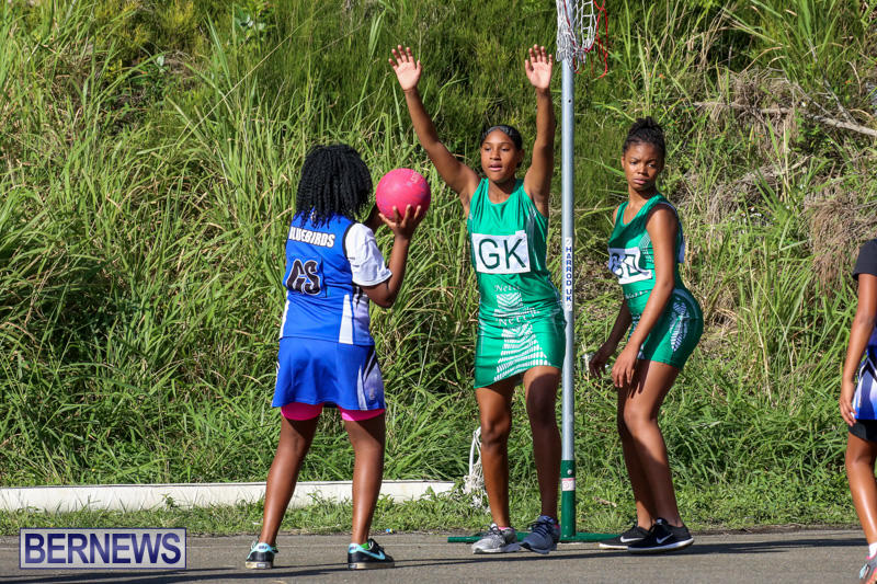 Netball-Bermuda-January-17-2015-43