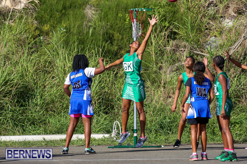 Netball-Bermuda-January-17-2015-44