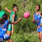Netball Bermuda, January 17 2015-45