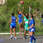Netball Bermuda, January 17 2015-46