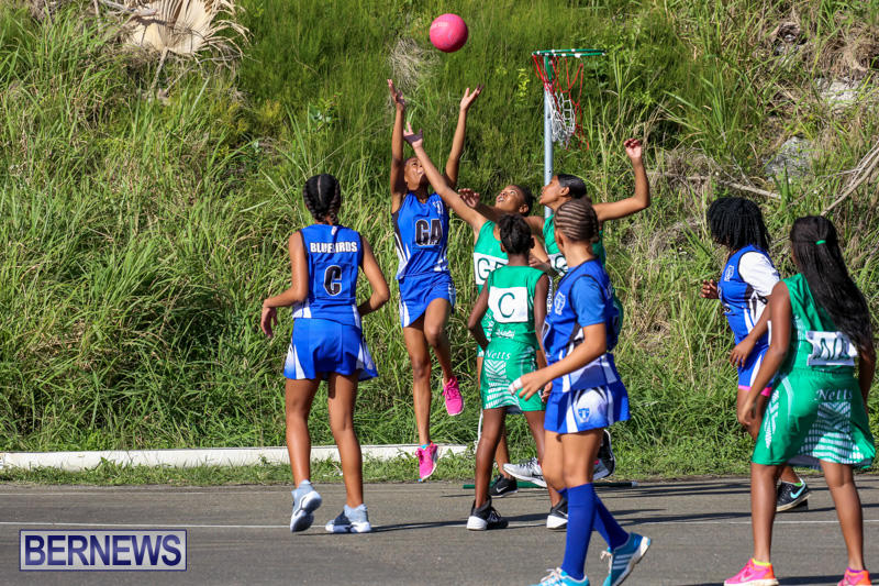 Netball-Bermuda-January-17-2015-46