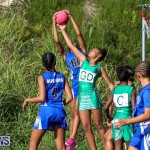 Netball Bermuda, January 17 2015-47