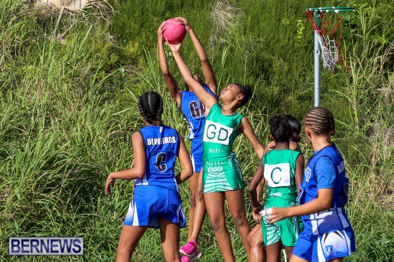 Netball-Bermuda-January-17-2015-47
