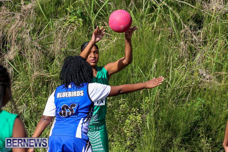 Netball-Bermuda-January-17-2015-48