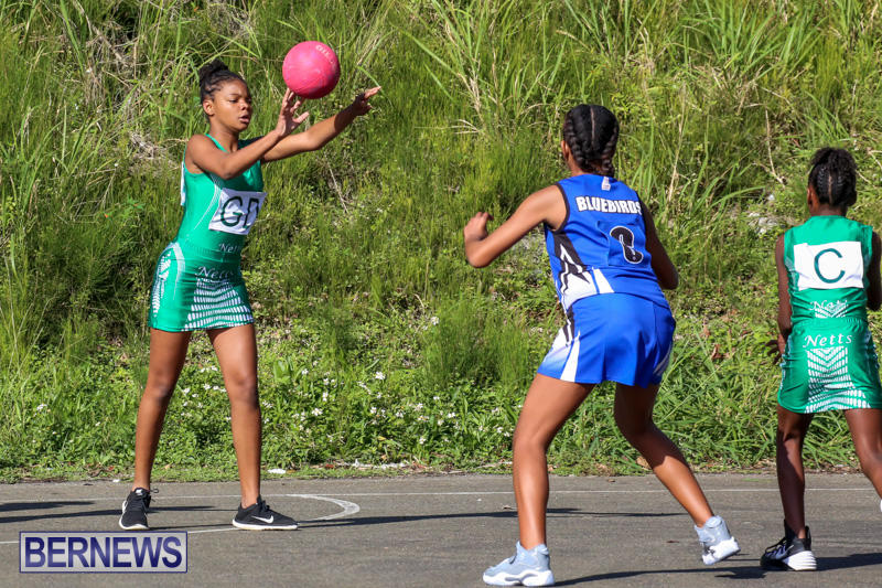 Netball-Bermuda-January-17-2015-49