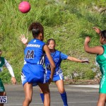 Netball Bermuda, January 17 2015-5