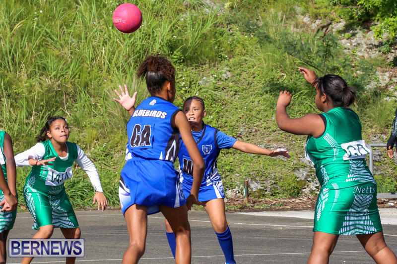 Netball-Bermuda-January-17-2015-5