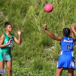 Netball Bermuda, January 17 2015-50