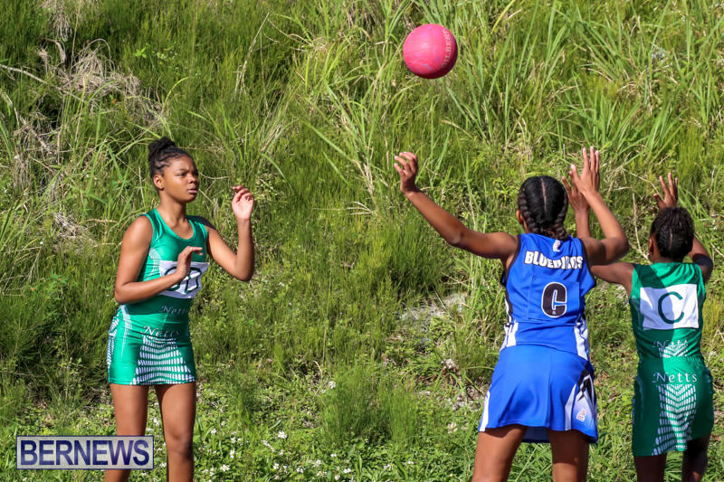 Netball-Bermuda-January-17-2015-50