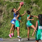 Netball Bermuda, January 17 2015-51