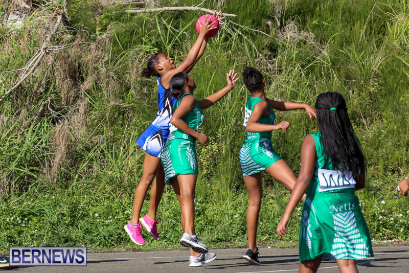 Netball-Bermuda-January-17-2015-51