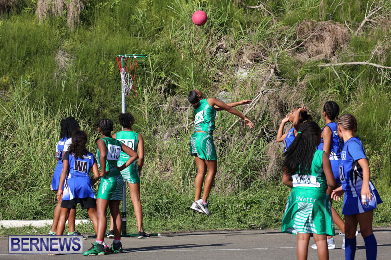 Netball-Bermuda-January-17-2015-52