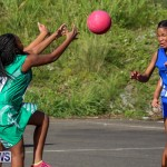 Netball Bermuda, January 17 2015-53