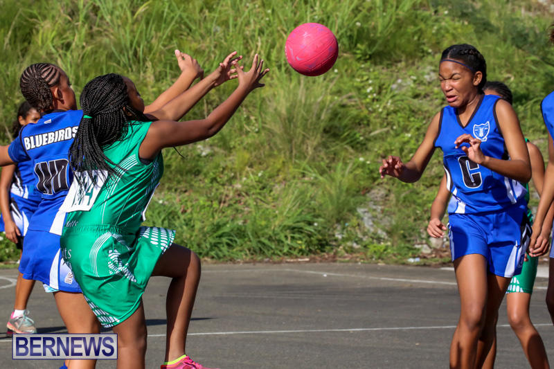 Netball-Bermuda-January-17-2015-53