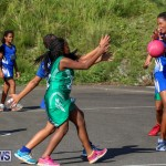 Netball Bermuda, January 17 2015-54