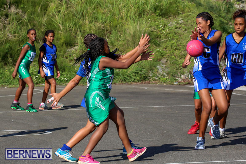 Netball-Bermuda-January-17-2015-54
