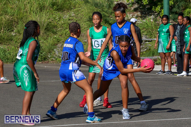 Netball-Bermuda-January-17-2015-56