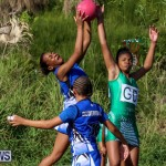Netball Bermuda, January 17 2015-57