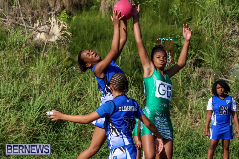 Netball-Bermuda-January-17-2015-57