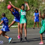 Netball Bermuda, January 17 2015-58