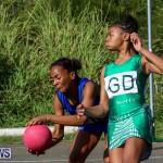 Netball Bermuda, January 17 2015-59