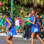 Netball Bermuda, January 17 2015-6